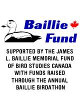 Baillie Fund